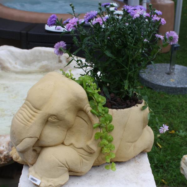 elefant als blumentopf naturstein centrum lpm. Black Bedroom Furniture Sets. Home Design Ideas