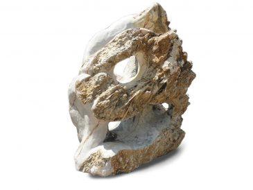 Skulpturstein Spezial 4 Grottenstein Drachenkopf