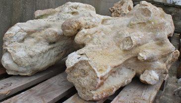 Kalkstein Findling Grottenstein